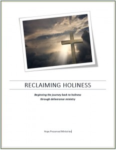 Reclaiming holiness Coveer